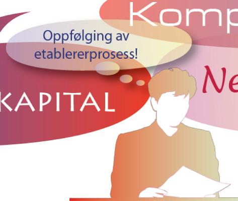 Bildelink til informasjon om illustrasjon til Nettverkskreditt Buskerud.