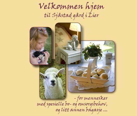 Bildelink til informasjon om folder for Sjåstad Bo- og omsorgshjem. Foto, tekstsamarbeid og design av folder utført av Sissel Slåttedal, Form og Fantasi.